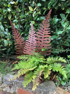 Metal Ferns Rusted set of 3 sculpture garden decor gift made in Hampshire