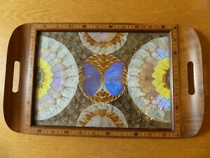 Vintage Wooden Tray  decorated with Iridescent Butterfly Wings - from Brazil