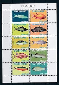 [SU1901] Suriname Surinam 2012 Marine Life Fish Miniature Sheet MNH