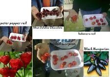 200 semi di peperoncini mix  più metodo infallibile per far germinare i semi