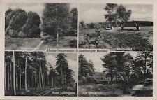 PLZ 21244 HOLM - Seppensen, Lüneburger Heide, gelaufen 1964 (#20543)