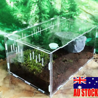 Reptile Cage Breeding Box Tarantula Insect Lizard Amphibian Tank Pet Supply
