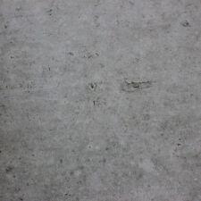 Light Grey Concrete Matt Porcelain Wall & Floor Tiles - SAMPLE