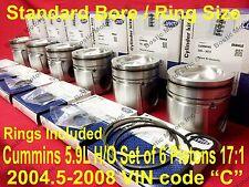 CUMMINS 5.9 5.9L PISTONS 2004.5-08 MAHLE STANDARD 17:1 H/O Matched/Balanced Set6