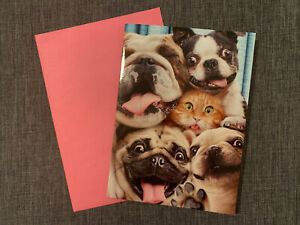 1  Happy Birthday Humor Dogs And A Cat Selfie Card With 1 Matching Envelope