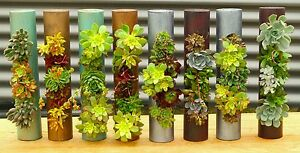 VGS Vertical Garden Solutions Fiorí Cylinder Planters (5) 18 inch Units