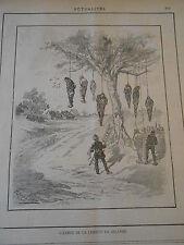Caricature 1887 - L'arbre de la Liberté en Irlande Pendu Pompier