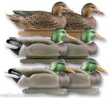 6 Avery Greenhead Gear GHG Life-Size Mallard Duck Decoys Weighted Keels Floater