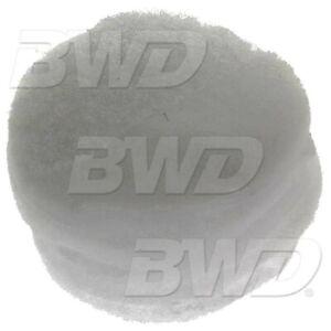 Vapor Canister Filter BWD EC224