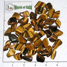 TIGEREYE, GOLDEN, small tumbled, 1/2 lb bulk stones 60-75 pkg Gold