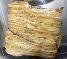 Charcoal roasted sea eel snack 3 Pound (908 grams) from China Sea