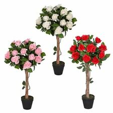 Potted Rose Trees Flowers