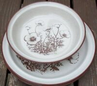 SET OF 2 NORITAKE DESERT FLOWERS DINNER PLATES and  A ROUND SERVING BOWL