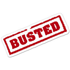 "Busted car bumper sticker decal 6"" x 4"""