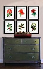 Christmas Home Decor Wall Hanging set of 6 Art Prints, Poinsettia, Holly Posters