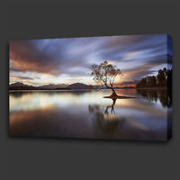 STUNNING CALM LAKE LONELY TREE SUNSET BOX CANVAS PRINT WALL ART PICTURE PHOTO