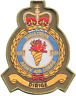 N.651 Squadrone Esercito Britannico Aria Arma Aac Crest Oliva Mod Ricamo Toppa