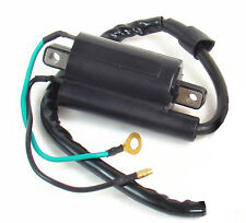 Ignition Coil For Bombardier Rally 200 2003-2006 (Fits: Bombardier)