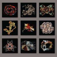 BOGUS ORDER Zen Brakes Vol. 2 (2017) 11-track CD album NEW/SEALED