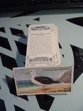 """OGDEN'S """" FOREIGN BIRDS 1924"""" FULL  SET [t] GOOD CONDITION AND BETTER"""