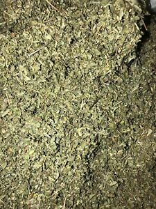 Bulk Damiana Leaf Aphrodisiac Wholesale Herb - Spice Discounters