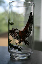 1978 Drinking Glass Endangered Species Collector's Series Bald Eagle BurgerChef