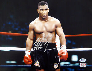 MIKE TYSON AUTHENTIC AUTOGRAPHED SIGNED 11X14 PHOTO BECKETT 180906