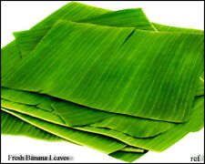 Fresh Banana Leaves-200g (Free UK Post)