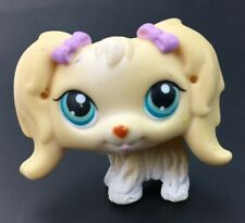 Littlest Pet Shop Cream Cocker Spaniel Dog #5298 Teal Eyes Purple Bow Hasbro LPS