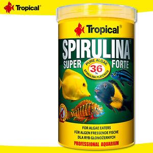 Tropical 1000 ML Spirulina Platensis Super Forte 36% Per Alghe Fressende Pesci