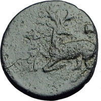 EPHESOS Ephesus IONIA Genuine 350BC Authentic Ancient Greek Coin BEE STAG i62795