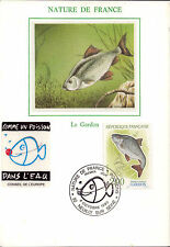 Complete Set 4 maxicards Nature of France 1990 France River Fish Silk Pictures