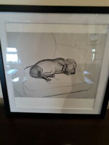 No 10 David Hockney Vintage Original Framed Print Dogs 1995 30x30