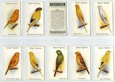 Full Set, Players, Aviary & Cage Birds 1933 VG (Gb1848-444)