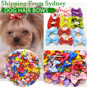 20-100 Pcs Mixed Pet Small Dog Hair Bows Rubber Bands Puppy Cat Grooming Accesso