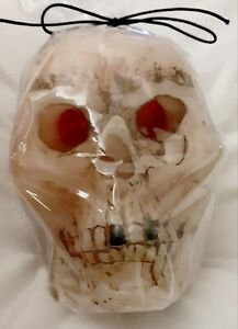 Halloween Large Bleeding Skull Candle  5.25 in x 4 in | Free Shipping