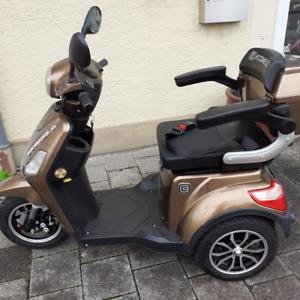 Elektro Dreiradroller Seniorenmobil Dreiradscooter 1000W