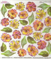 Sospeso Trasparente 3D Decoupage Primula Sirocco Flower Printed Film Sheet