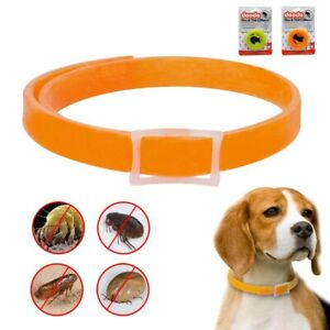 Flea and Tick Collar for Dog Pet Cat Adjustable Waterproof 4 Months Protection