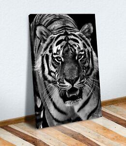 CANVAS WALL ART PRINT ARTWORK 30MM DEEP FRAME  Tiger Black and White