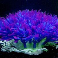 Aquarium Accessories Fish Tank Decoration Underwater Water  s Ornament