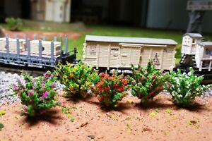 50 dunkelgrüne Büsche, rot, gelb, weiß, rosa und violett blühend, 28 mm hoch