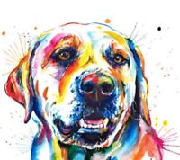"Labrador Dog Colourful Animal wall art printed on canvas 16'' X 16"" solid frame"