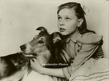 Orig. Photo, Lena Nystedt und Jago, Filmstars, 1960