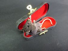 TAXIDERMY Black Mouse In Miniature Violin Case (log no:55) Sitting Position.
