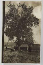 Farm Scene Large Man Standing at Tree RPPC Postcard R1
