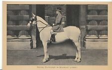 Royalty Postcard - Royal Outrider in Scarlet Livery   U1645