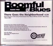 ROOMFUL OF BLUES There Goes the Neighborhood PROMO CD