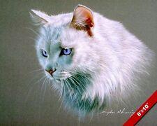 WHITE CAT W ARCTIC BLUE EYES ANIMAL HEAD PORTRAIT PAINTING ART REAL CANVAS PRINT