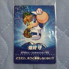 NEW amiibo Card for Nintendo Switch Power Pros baseball IKARI MAMORU JAPAN